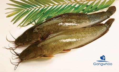 Nâng mũi ăn cá được không?