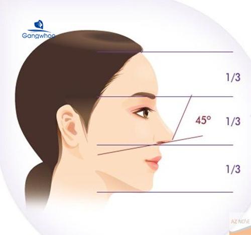 thế nào sống mũi đẹp hoàn hảo