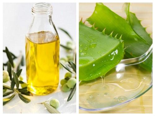 Dưỡng môi bằng dầu oliu và nha đam